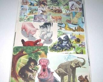 Animal Ephemera Pack 65 Pieces of Vintage Ephemera for Altered Art