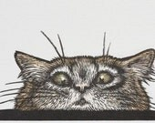 Peeping Tom Cat Engraving