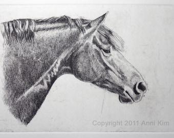 Horse art print Original Hand-pulled Etching