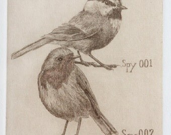 Bird Etching, Chickadee and Robin Original hand pulled Print