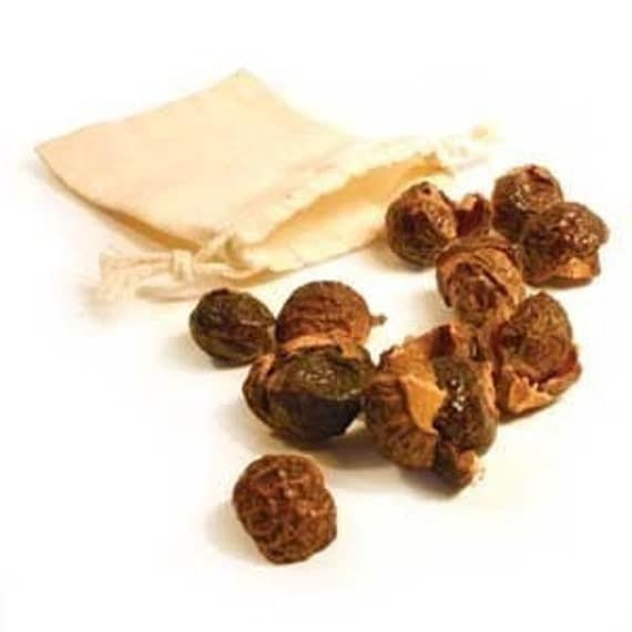 Organic Soapnuts (soap nuts) All Natural Soap 1.1LB (500g) Make Your Own Laundry Detergent