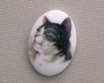 1 Plastic Cat Cameo Cabochon 18x13mm Style 4 (1) IC004
