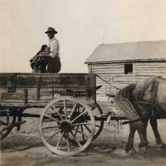 Three Photos of Early 1900s Farming - Horse, Wagon, Team of Horses