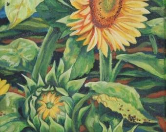 Sunflowers - Original oil painting.