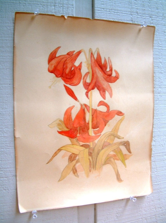 Beautiful Vintage Muted Daylily Watercolor Painting