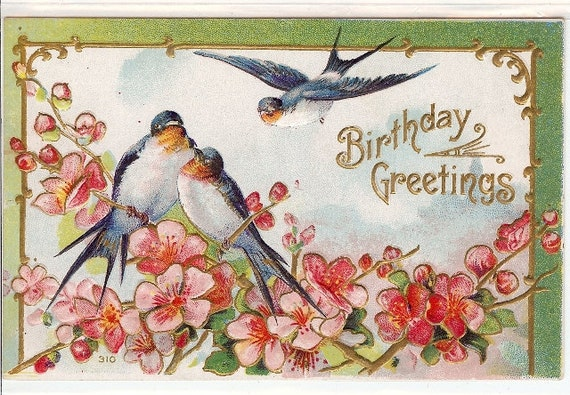 Vintage Birthday Greeting Post Card, Blue Birds, Spring Time, Cherry Blossoms, Flowers 21G