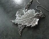 Real Leaf Earrings - Sterling Silver - Birch
