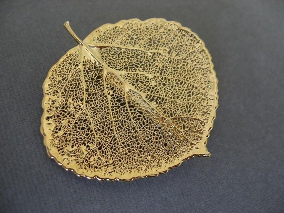 Real Aspen Leaf Brooch/Pin and Pendant - 24k Gold