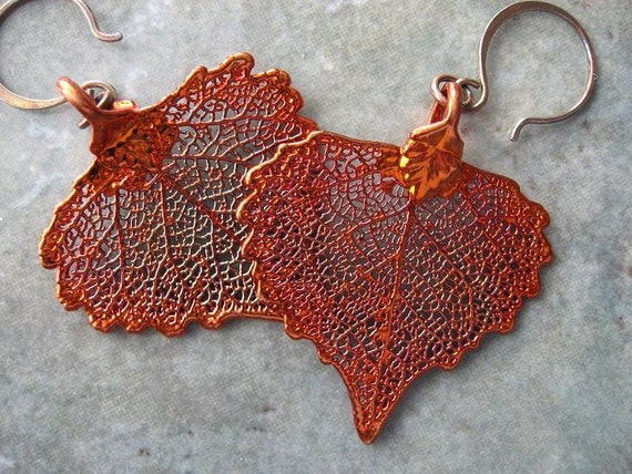 RESERVED  for only Matthew........Real Leaf Earrings - Cottonwood - Iridescent Copper