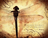 Inspirational Wall Art - Inspirational Quote - Famous Quote - Ancient Proverb - Dragonfly Art - Everything Has Beauty - Confucius quote