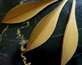 "Vintage Brass Leaves, 1950s Slender Textured Leaf Stampings, Dapped Jewelry Findings or Embellishments, 40x9mm (appr. 1.5""), 3 pcs. (C18)"