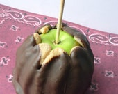 Girl Scout Cookie Inspired Caramel Apple... Tag-a-longs