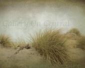 Beach Grass - original photo  - ocean, sea, fog, gray, shabby chic, seascape