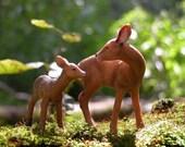 Deer - 8x8 photograph