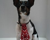 Red Skull and Crossbones Print Dog Tie