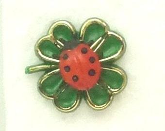 Lucky Clover Ladybug craft project miniature ladybug diorama scrapbooking- 203-3-106