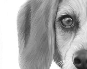 Original Art, ACEO, Digital Illustration, Beagle, Dog