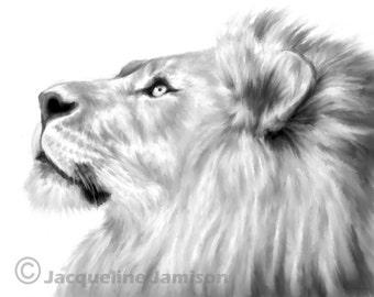 Original Art, ACEO, Lion, Looking Up