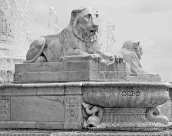Scott Fountain, Detroit Photograph, Lion Fountain, Michigan Photo, Black and White, Architecture Wall Decor 5 x 7 Print Fine Art Photograph