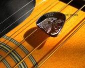 """Guitar Pick """"Idaho Quarter"""""""