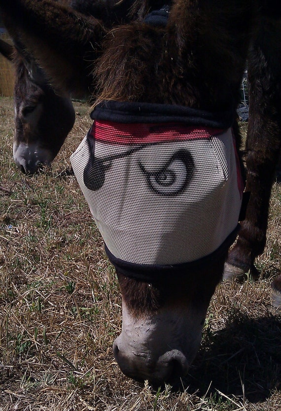 Fly Mask- size small - 'argh matey' Pirate
