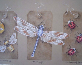 Insect Tags Art Colored Pencil