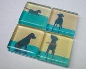 4 Samll Black Dog Glass Magnets