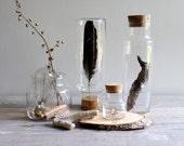 Four Vintage Glass Specimen Jars