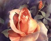 Original Watercolor Rose - Painting - Alisa Wilcher