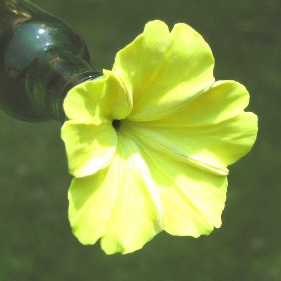 HUMMINGBIRD FEEDER--Lemon Yellow Four O'Clock on green bottle