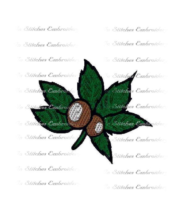 INSTANT Download - Buckeye leaf embroidery design State of Ohio tree 3 sizes