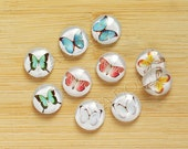 10pcs handmade butterfly  round clear glass dome cabochons 12mm (12-9433)