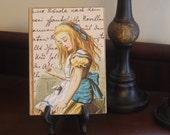 Alice in Wonderland - journal