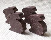 Chocolate Bunny Magnets