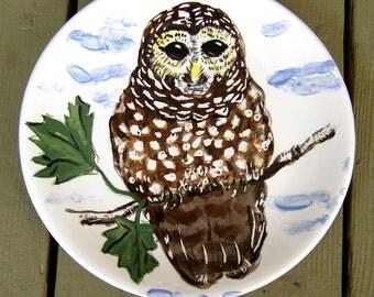 ceramic plate round plate animals bird owl brown white blue wall plate dessert plate handpainted