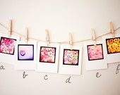 TTV Photograph Valentines Day Cards - Choose 6