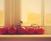 sun ripe tomatoes. (5 x 7 inch photograph)