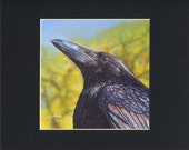 Akiko Open Edition Matted Print of a Crow Raven Painting (8x10)