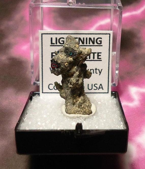 THUNDER-DOG2 Natural Colorado USA Prehistoric Fossilized Lightning Fulgurite In Perky Mineral Specimen Box