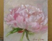 Pink Peony Flower small original oil painting