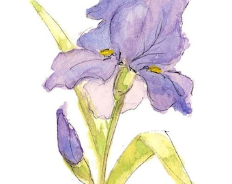 Watercolor Iris Set of 6 Note Cards, hand painted note card, watercolor iris