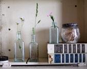 Vintage Glass Bottles. Apothecary. Vase.