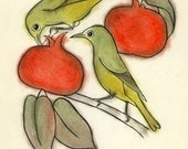 "Bird print - Persimmon breakfast -  8.3"" X 11.8"" print"