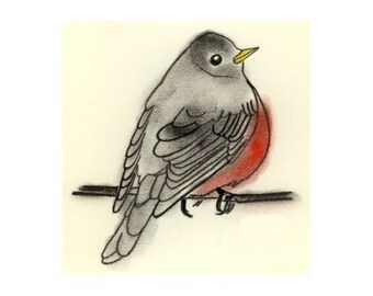 Bird Art Print - Bird Artwork - Bird Wall Art - Bird Decor  Little Robin art print 4 X 6 - 4 for 3 Sale