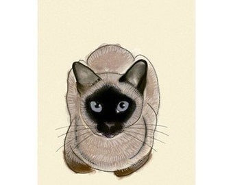 Siamese Cat Art -  Blue Eyes -  4 X 6 print of cat drawing - 4 for 3 SALE