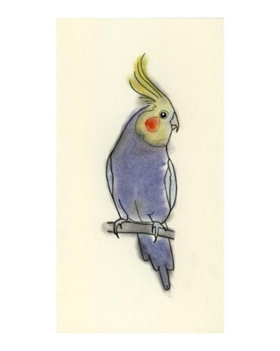 Australien oiseau art dessin petit calopsitte impression 4 - Dessin calopsitte ...