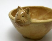 Ceramic Cat Bowl in Butterscotch Yellow