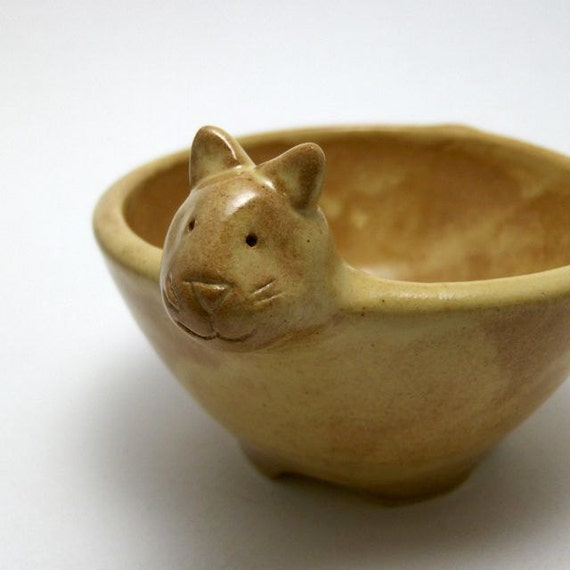ceramic cat bowl in butterscotch yellow. Black Bedroom Furniture Sets. Home Design Ideas