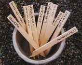 Wood Garden Markers Made From Recycled Wood, Pack of 30