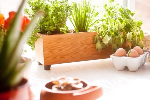 Large Modern Wood Herb Planter